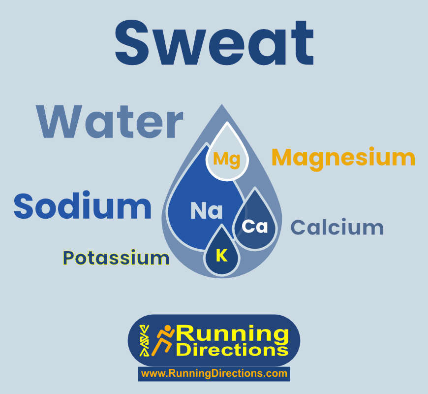 What is in your sweat